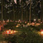 Meditazione all'aperto di notte